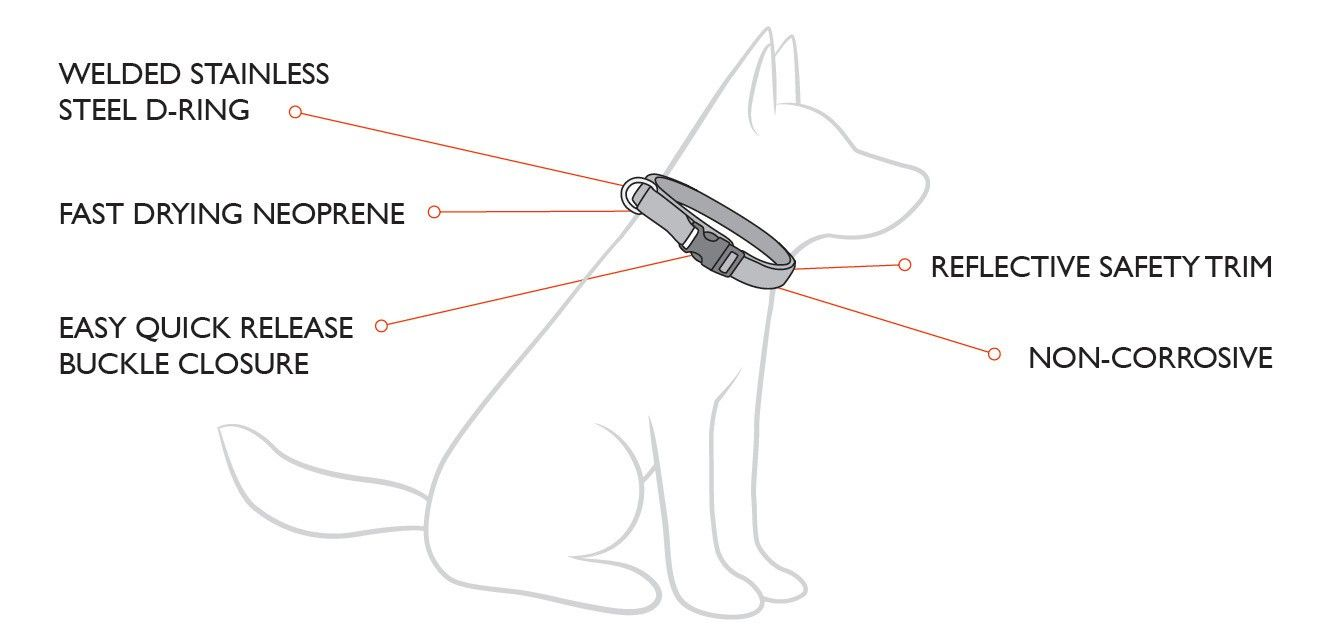 Neo Classic Collar Features