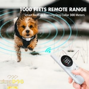 Collier anti-choc Rechargeable pour chiens